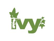 Apache Ivy