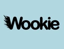 Apache Wookie