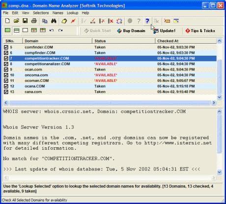 Domain Name Analyzer