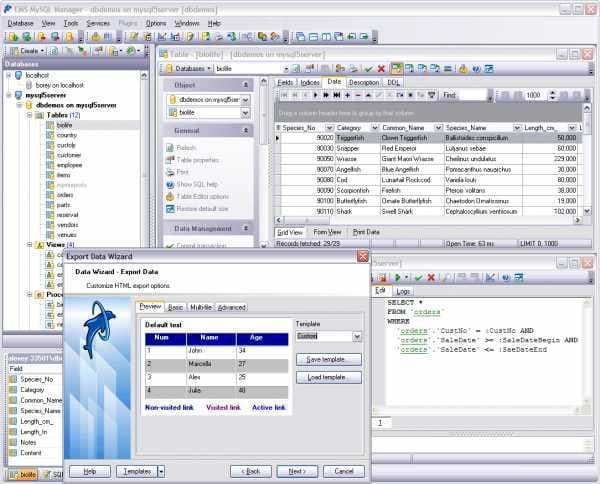 EMS MySQL Manager for Windows