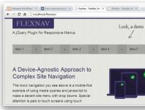 FlexNav
