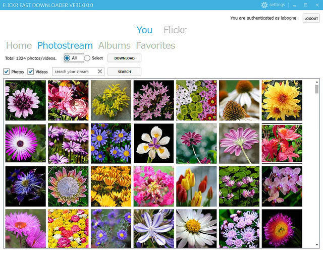 Flickr Fast Downloader