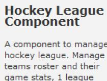 Hockey League Component