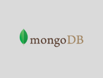 MongoDB Node.JS Driver