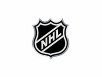 The Python NHL Reader