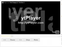 ytPlayer