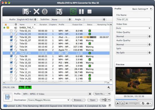 4Media DVD to MP4 Converter SE