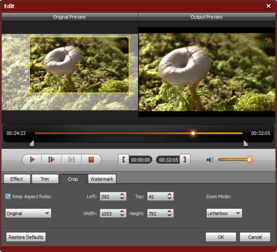 4Videosoft AMV Media Converter