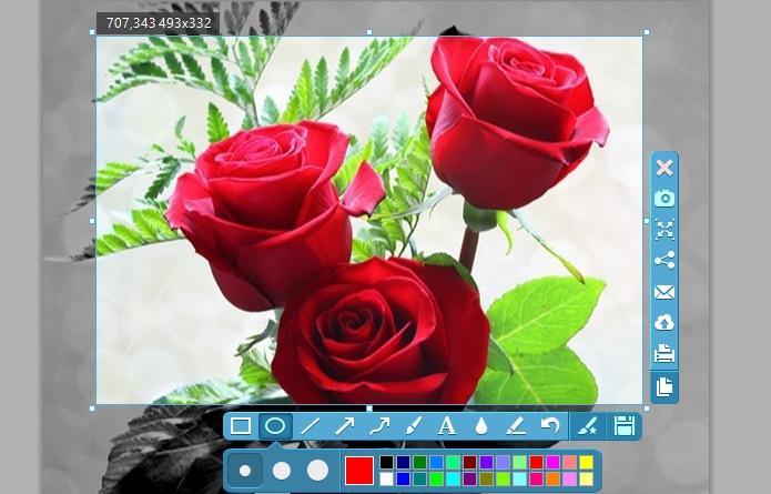 apowersoft-photo-viewer_4_329491.jpg