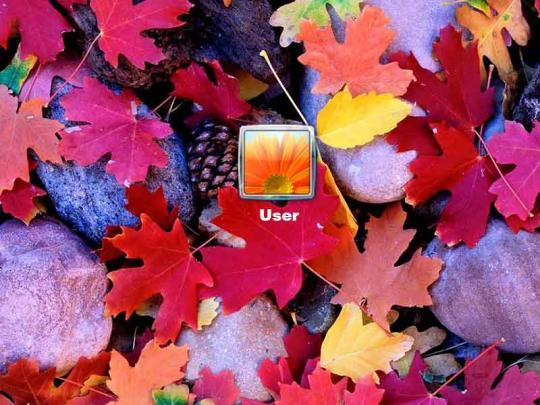 autumn-leaves-logon-screen_1_11836.jpg