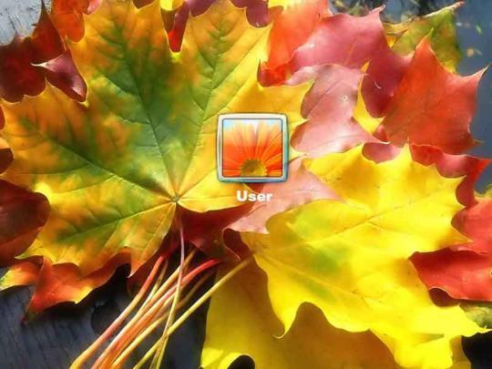 autumn-leaves-logon-screen_2_11836.jpg