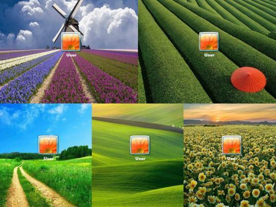 awesome-fields-logon-screen_2_11837.jpg