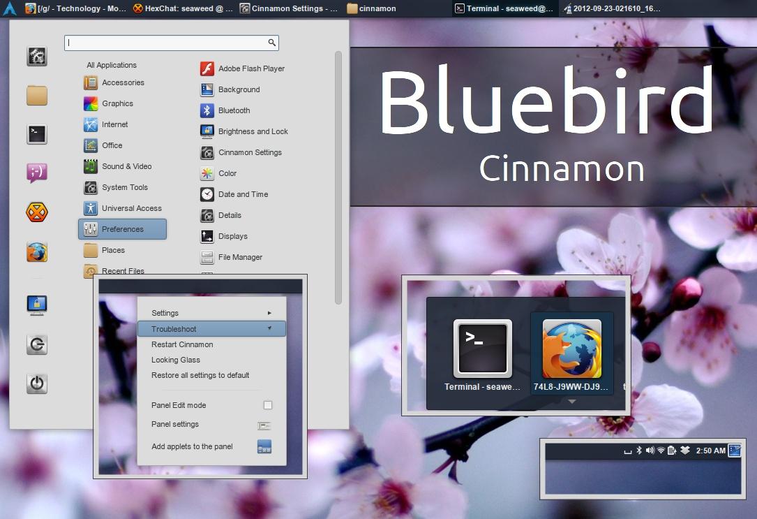 Bluebird-Cinnamon