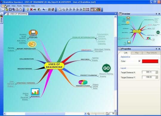 BrainMine Standard 2005