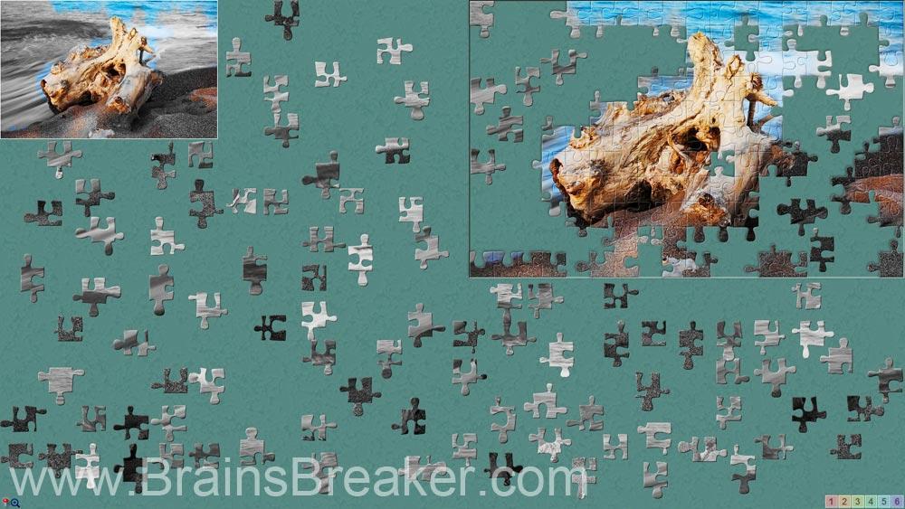 brainsbreaker_1_11168.jpg