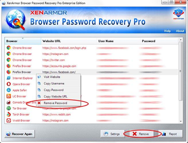browser-password-recovery-pro_3_329498.jpg
