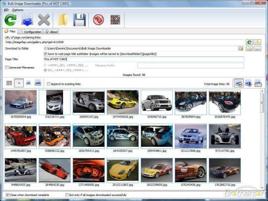 Bulk Image Downloader Google Chrome Extension