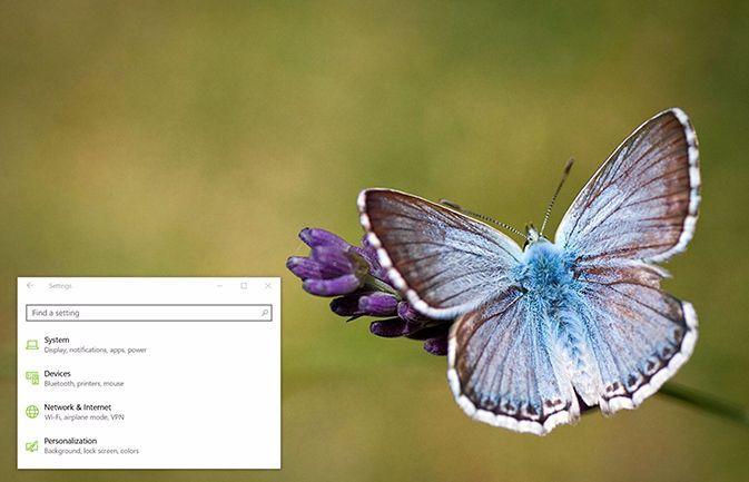 Butterflies Theme