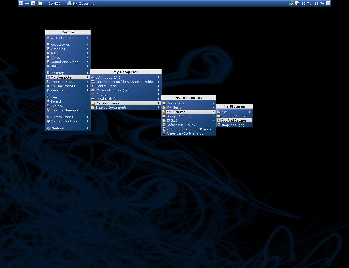 رایگان دانلود Cameo برای Windows 8 ::: نرمافزار