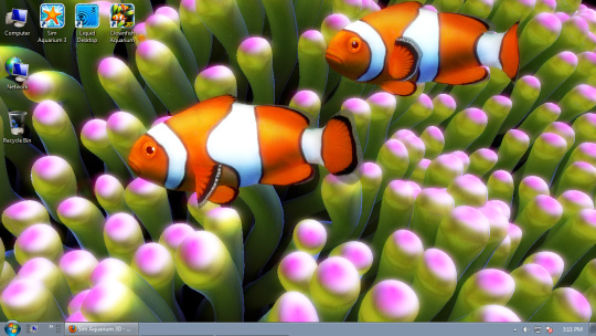 Clownfish Aquarium Live Wallpaper & Screensaver