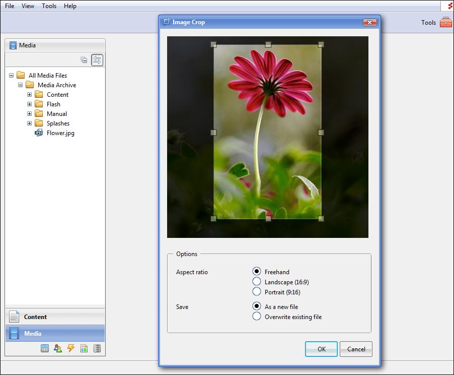 composite-c1-cms_3_83318.png