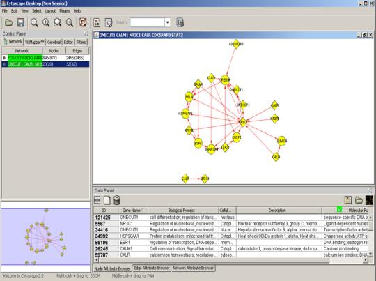 Cytoscape (32-bit)