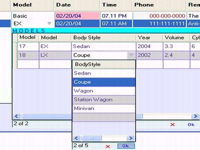 DataGridView.Columns Visual Studio dll