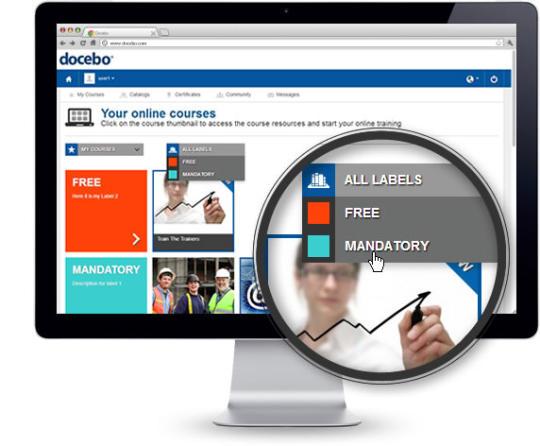 Docebo E-Learning Platform