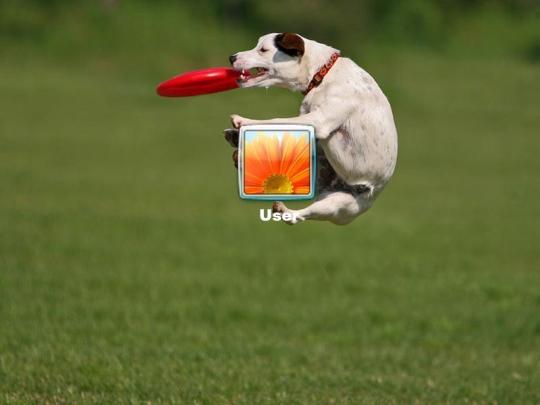 dogs-logon-screen_2_11834.jpg