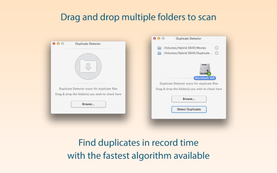 Duplicate Detector
