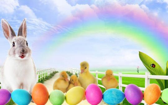 Easter Bunny Screensaver