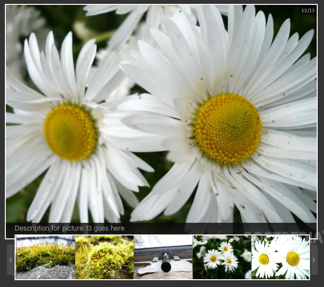 Easy Image Gallery Horizontal