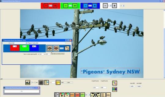 f2-sidewinderphotocolourbalancer_1_1491.jpg
