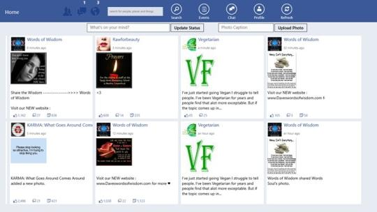 Facebook Pro for Windows 8