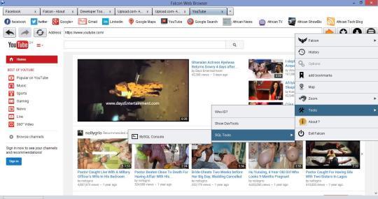 Falcon Browser