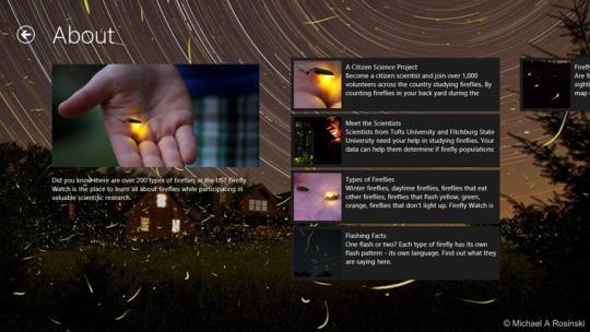 firefly-watch_1_11925.jpg