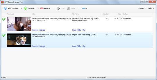 flv-downloader-pro_1_437.jpg