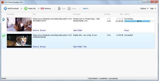 FLV Downloader Pro
