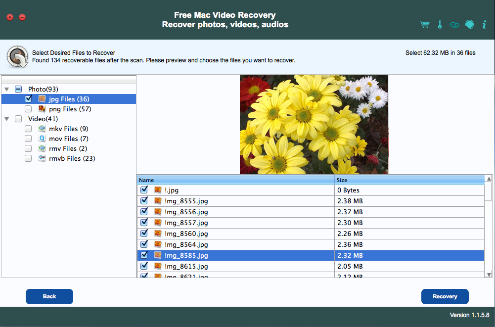 Free Mac Video Recovery