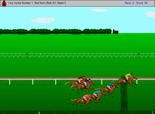 Horse Racing - Steeplechase