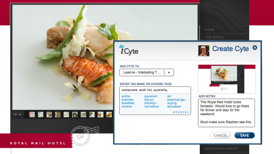 iCyte for Firefox
