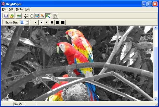 ImageElements BrightSpot