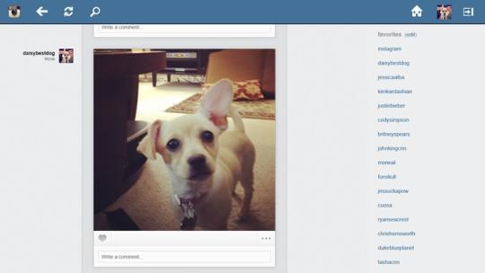 Instagram Explorer for Windows 8