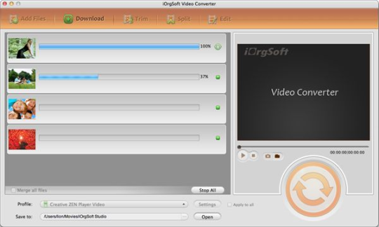 iorgsoft-video-converter-3358_3_3358.png