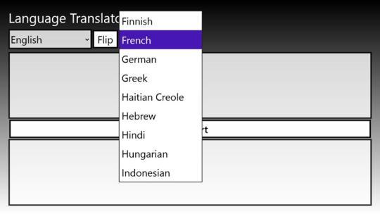 Language Translator Pro