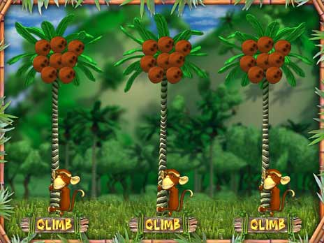 Monkey Money Slots Game