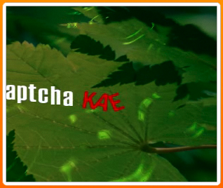 NuCaptcha Lite