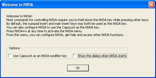 NVDA Screen Reader
