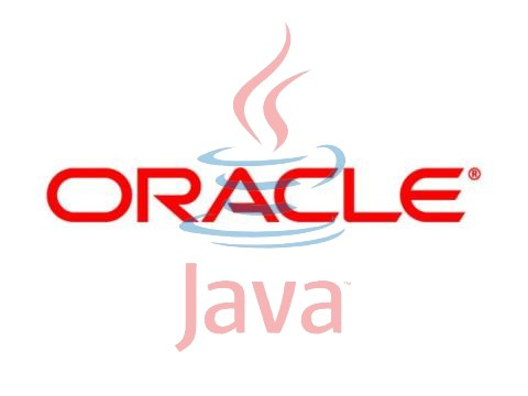 Oracle Java Standard Edition Runtime Environment
