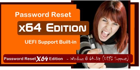 Password Reset X64 Edition